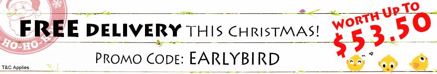 Early Bird Discount Chrismas Menu Buffet